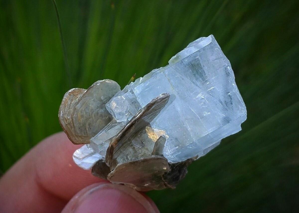 Aquamarine specimens ze shop :~ - ancientmountaintreasures | ello