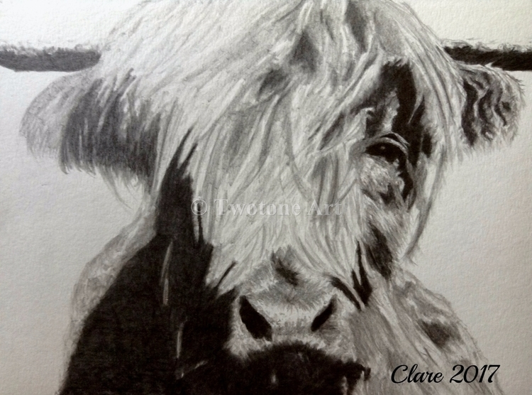 Wallace Graphite Pencil - Highlandcow - twotoneart | ello