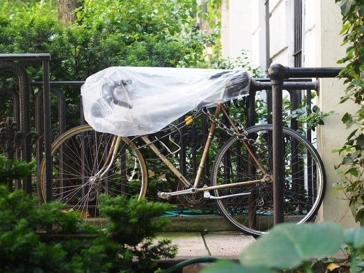 Purposefully bagged - NYCSteelponies - nycsteelponies | ello