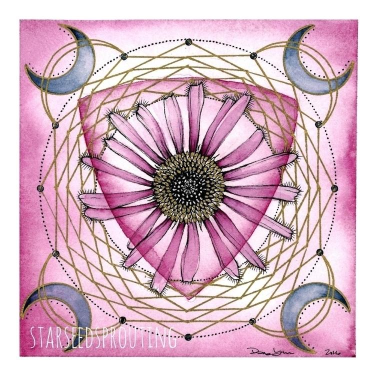 Echinacea plant spirit gift mai - starseedsprouting | ello