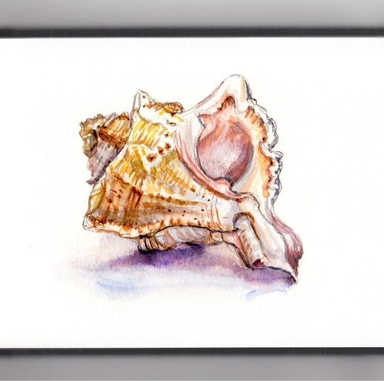 Listening Seashells - watercolor - doodlewash | ello