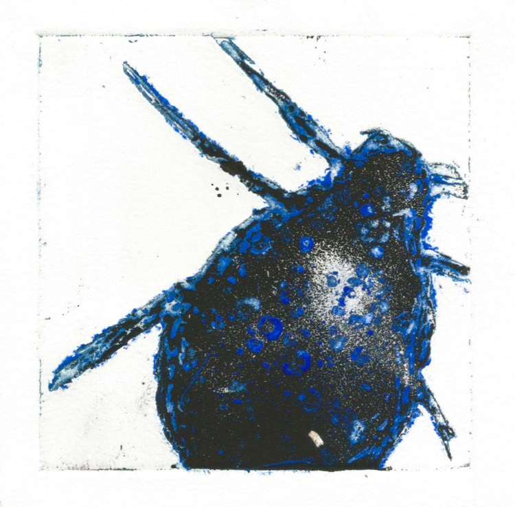 zinc etchings - printmaking, intaglio - nikkeya | ello