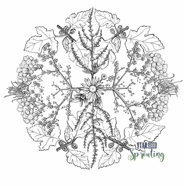 Nature Mandala: June Collection - starseedsprouting | ello