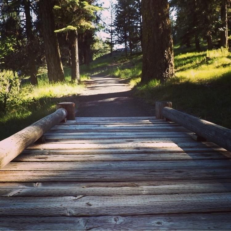 choice path story untold. share - alexgzarate | ello