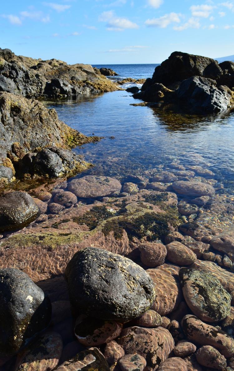 Sea Pool Madeira - euric | ello