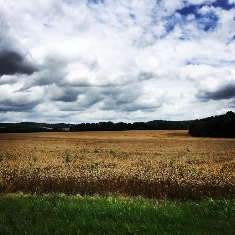 Field - field, sky, clouds - j_smith | ello