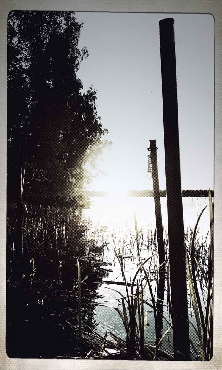 dream - nature, lake, sunset, love - yogiwod   ello