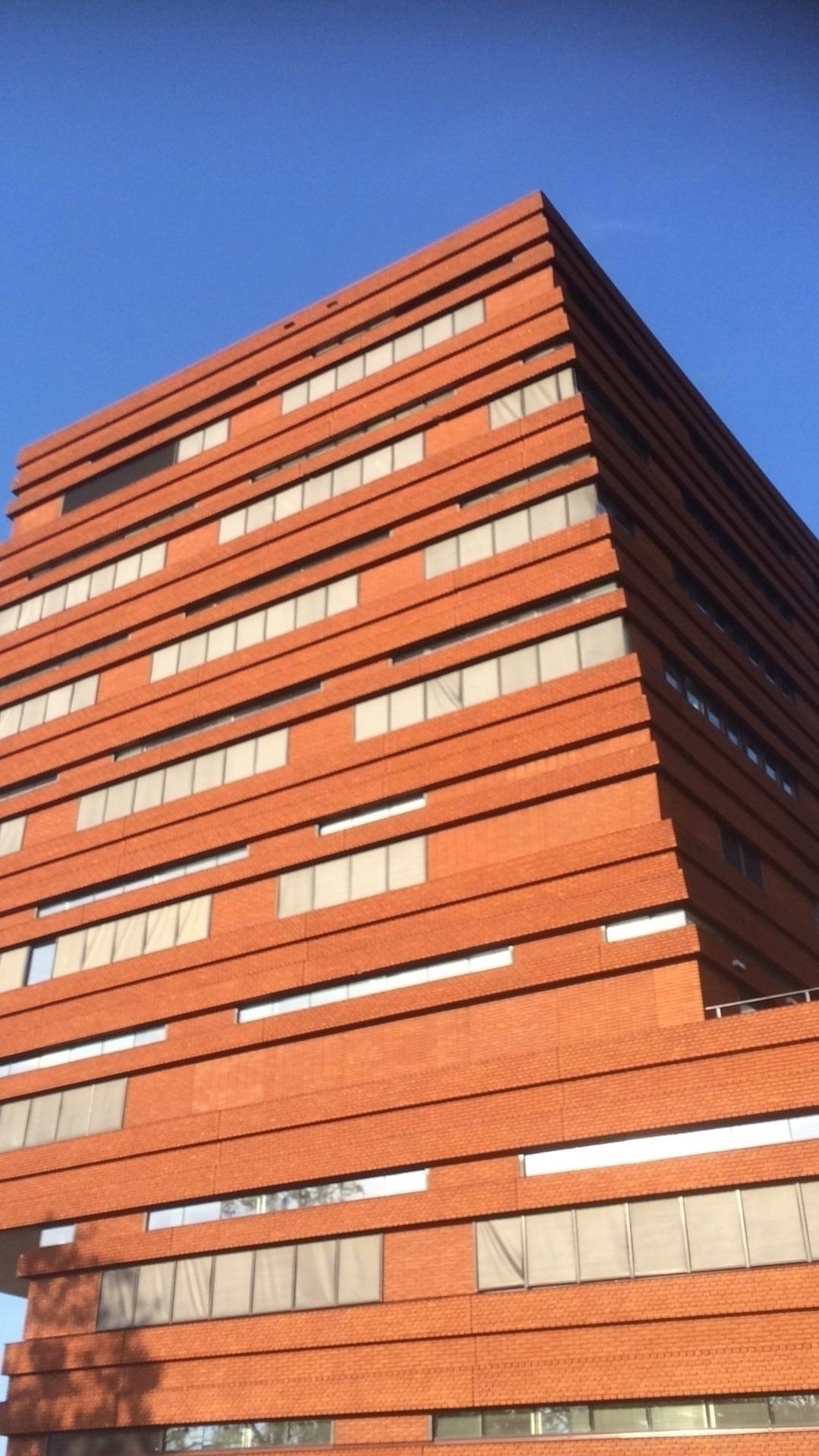 Stadhuis Waalwijk (Noord-Braban - willembakker | ello
