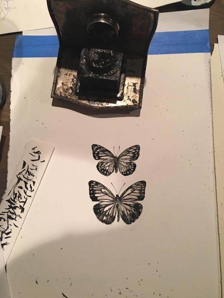 Ink painting - butterflies, entomology - alexakarabin | ello