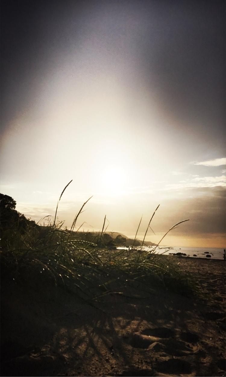 Love - walk, beach, capture, light - yogiwod | ello