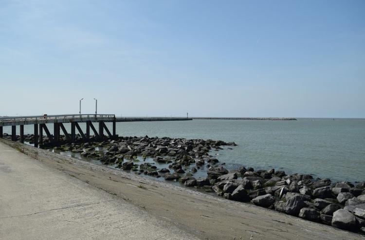 Oostende - lunabloom | ello