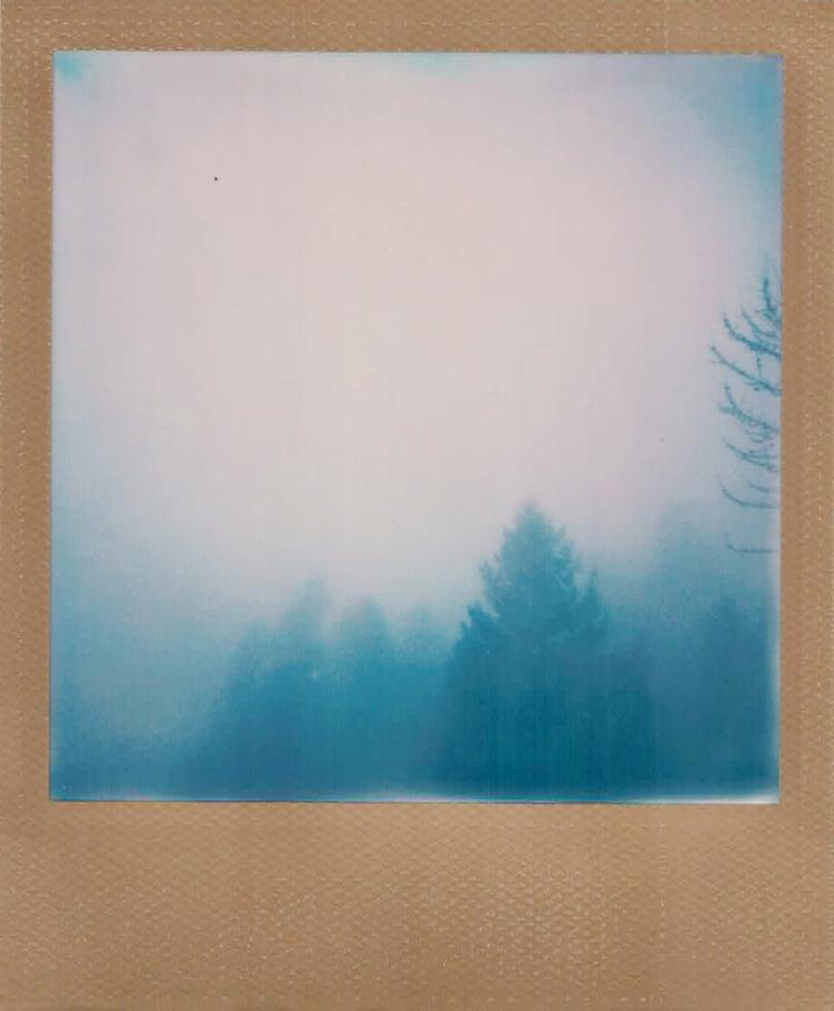 photography - polaroid, fog, film - emilyweeks | ello