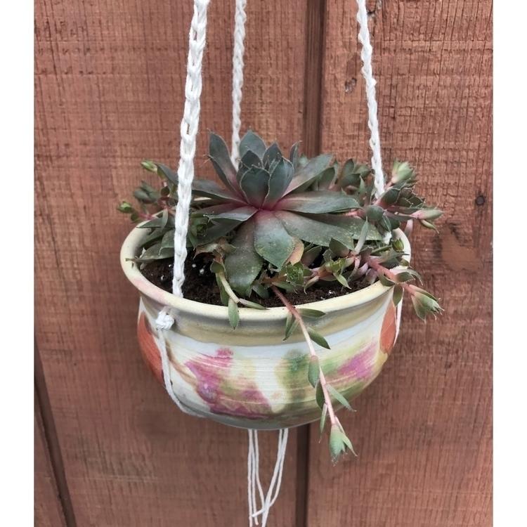 hanging planter - plant, succulents - muddynature_pottery | ello