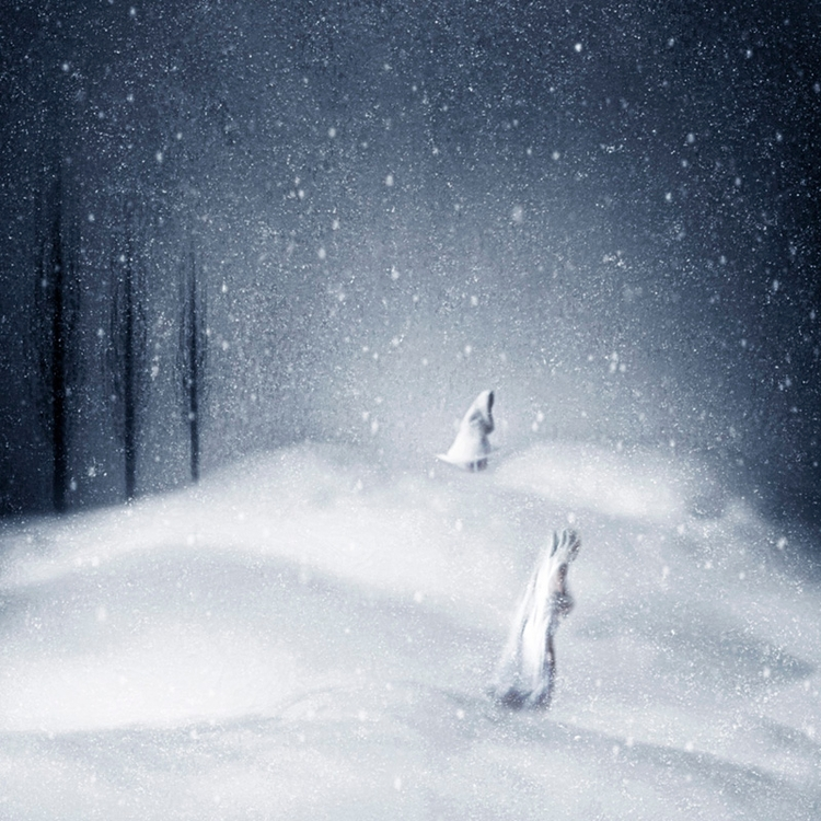 Snowland traveler series - color - alessandrafavetto   ello