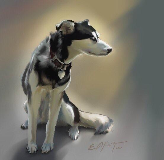 digital, paint, portrait, dog - dreamsong | ello
