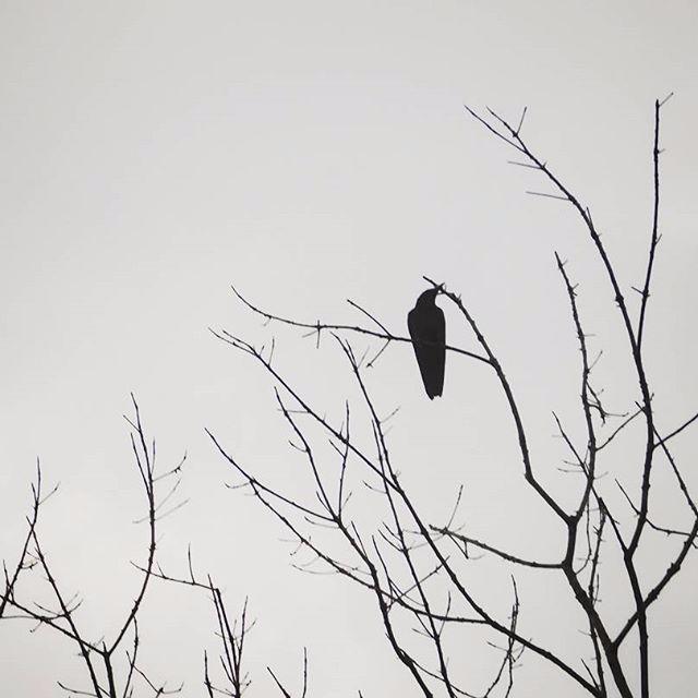 Solitary - dark, blacknwhite, photography - athulnair | ello