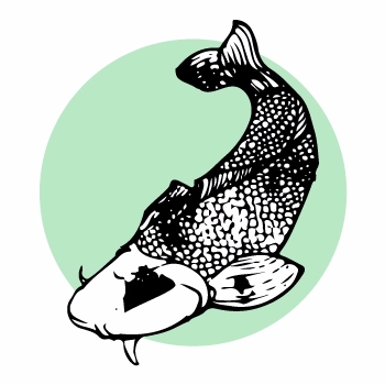 drawing vector - koi, blackandwhite - laura_mor | ello