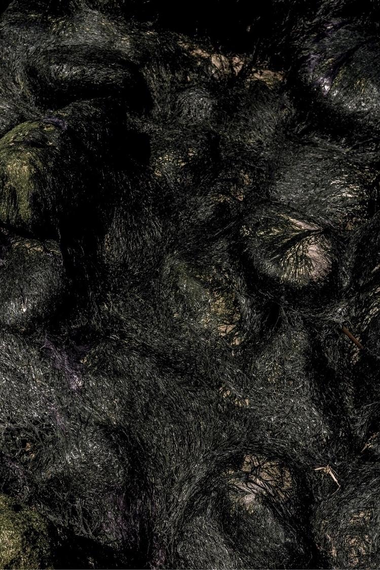 mOOn RaDaR • exhibition print 0 - nikosono   ello