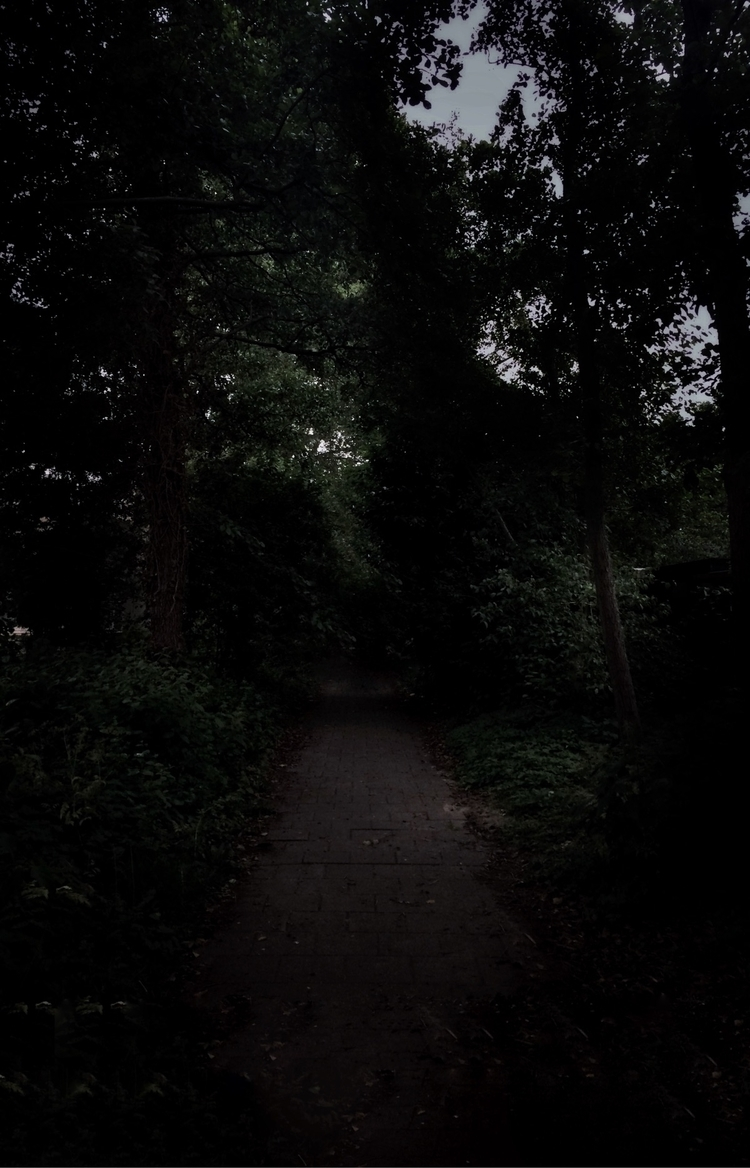 Endless. Dark. Cold - endless, darkphotography - forestofdreams   ello