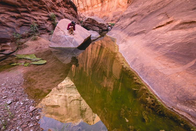 Angles Escalante - thomaswoodson | ello