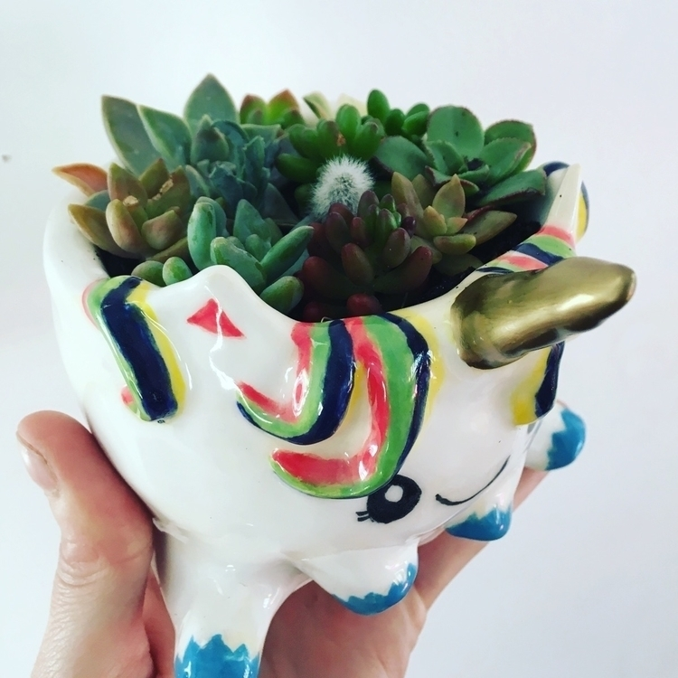 Unicorn pot filled succulents - livingdecortwins#littledudepot#unicorn#ceramics - livingdecortwins | ello