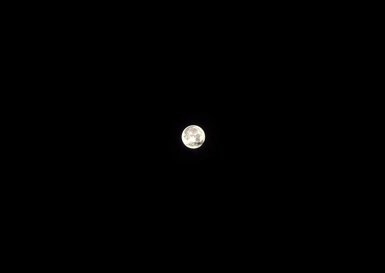 violetaruskova Post 15 Jun 2017 07:29:35 UTC | ello