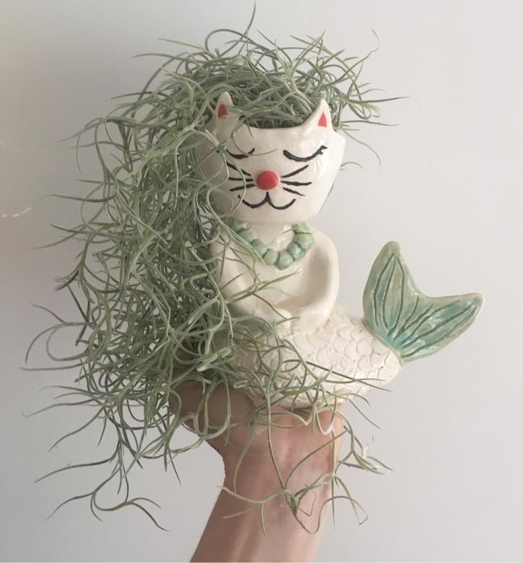 Purrmaid Spanish Moss hair - livingdecortwins#purrmaid#ceramic#mermaid#cat#planter#tillansia - livingdecortwins | ello