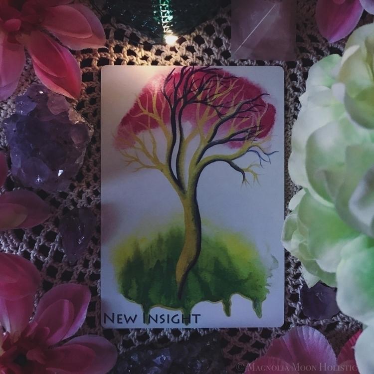 Deck: Soul Trees Discovery Deck - magnoliamoonholistic | ello