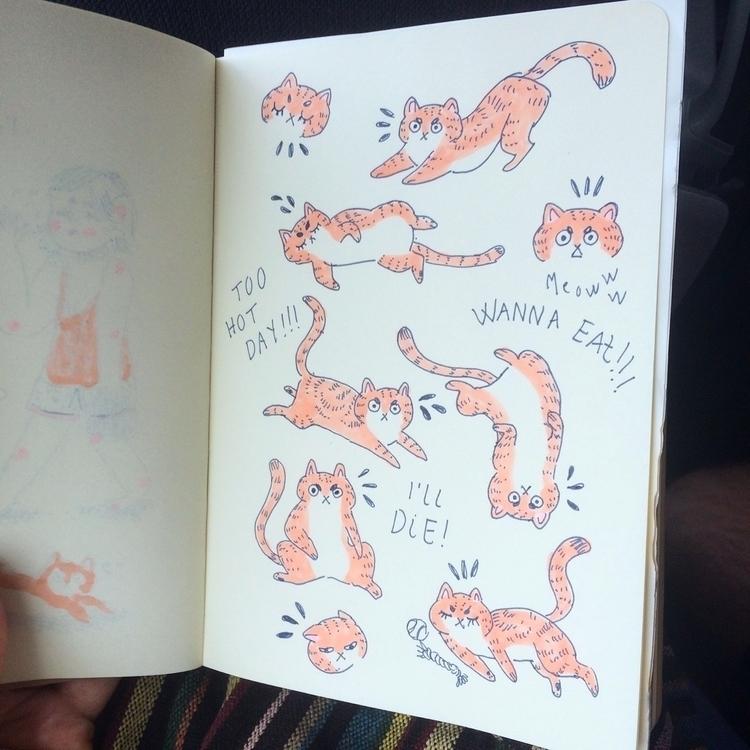 cat Crevette - feline, pet, kitty - skeenep | ello