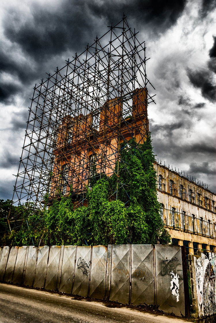 jungle takes silently - Habana, Cuba - christofkessemeier | ello