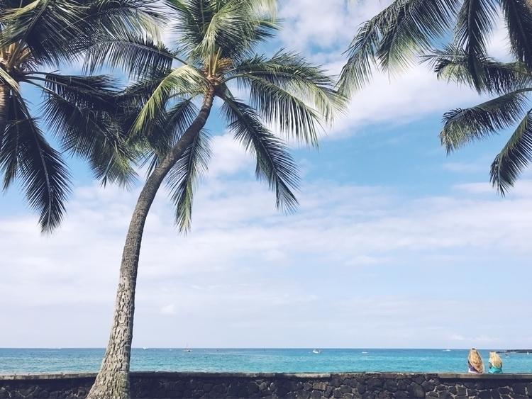 Watching fish. Kona, Hawaii Fuj - pineappleandcoconut | ello