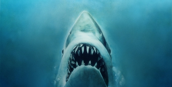 Jaws, Mythbusters Kiki - MentalHealth - speedykitty   ello