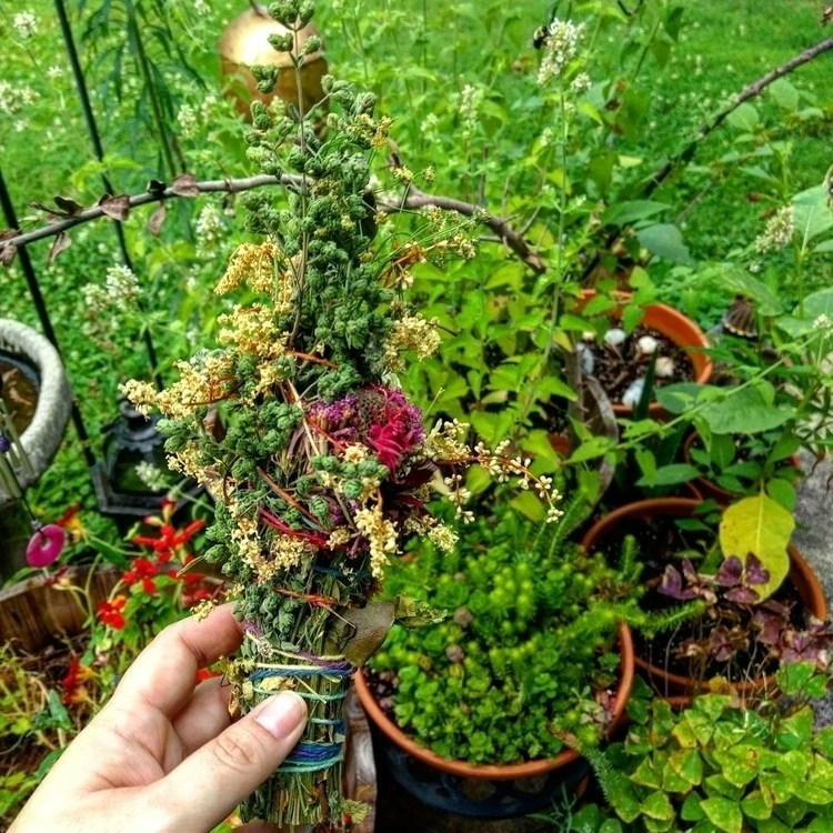 Wildcrafted Smudges Garden! Hem - naturalwitchapothecary | ello