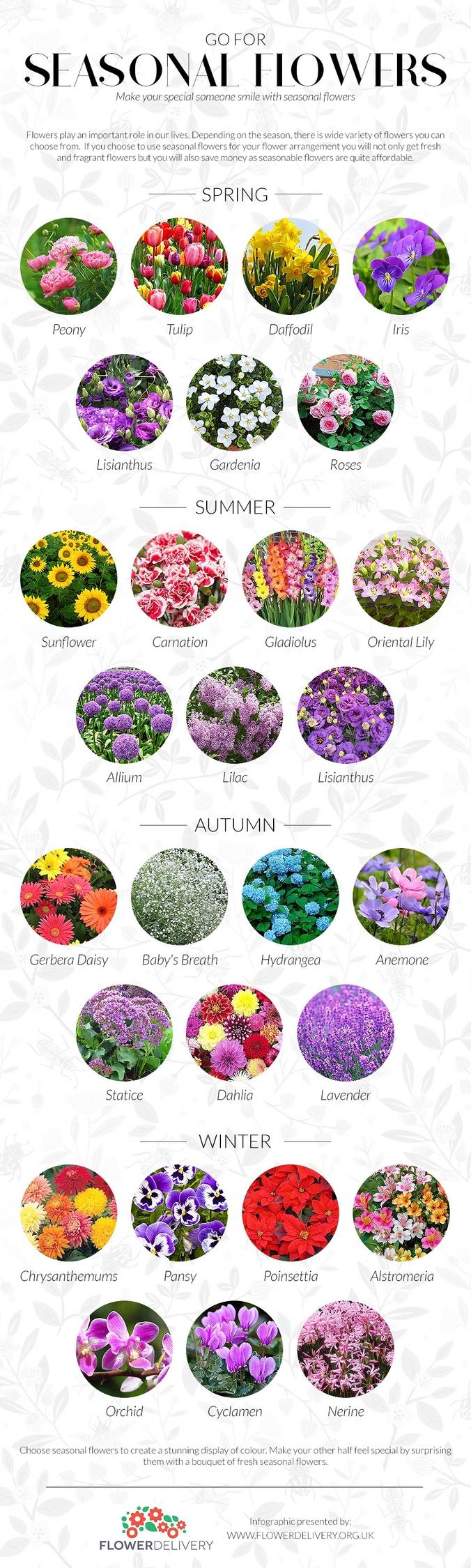 seasonal flowers charm beauty.  - alisonhart | ello