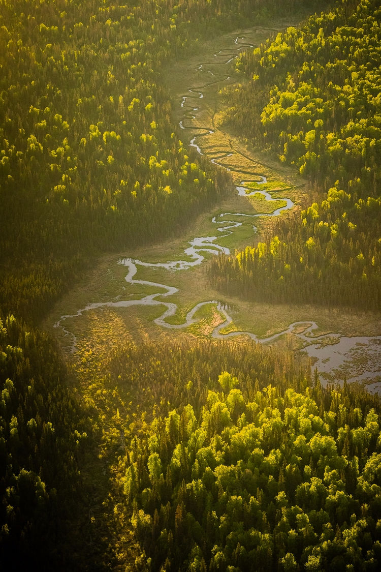 Aerial Kenai Peninsula Rivers*  - tobyharriman | ello