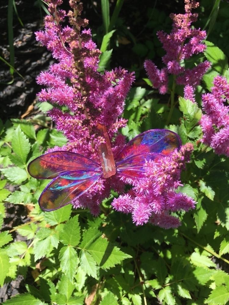 fun dragonfly photo shoot 🦋 sho - faerieblessings | ello
