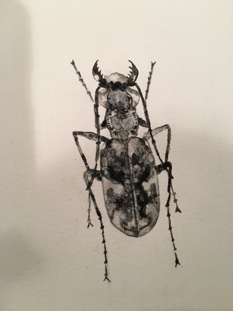 beetle, ink, painting, artists - alexakarabin   ello