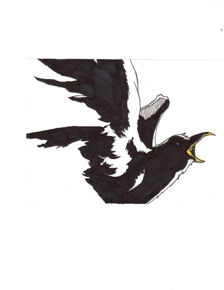 pic crow - joshuaracine | ello