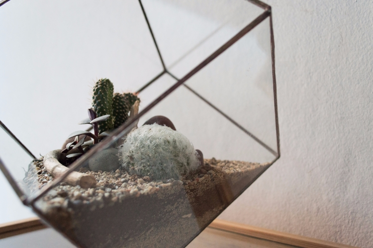 Stained glass terrarium // Hand - urban_terra | ello