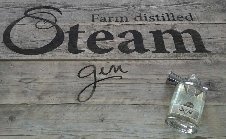 Steam gin unique small scale Fi - gincubator | ello