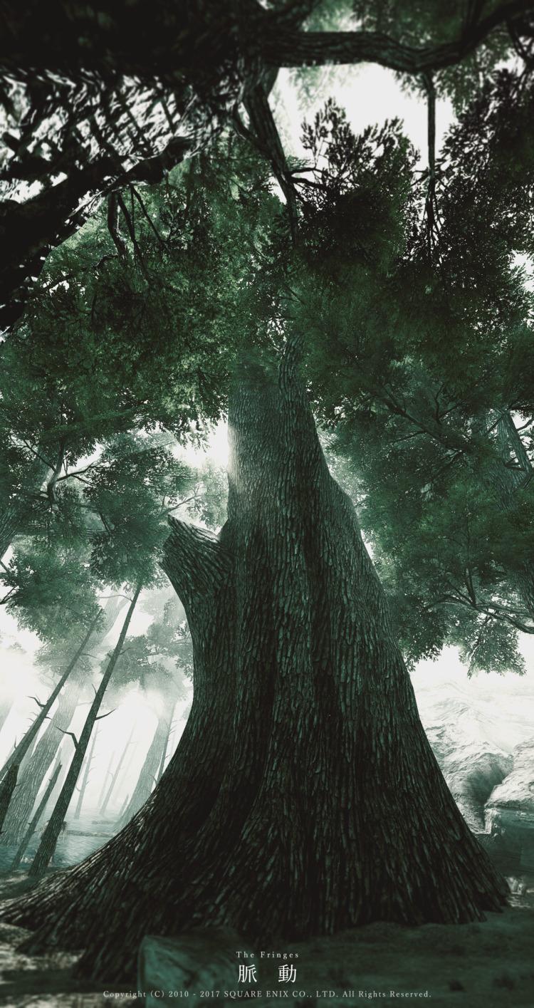 脈動 ギラバニア辺境地帯 - 夜の森 より - FF14, FFXIV - flcvs | ello