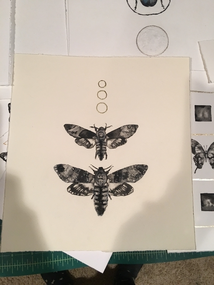 deaths head hawk moths. Ink pai - alexakarabin | ello