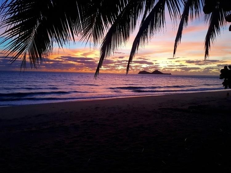 beautiful, Queensland, PortDouglas:purple_heart: - anne_millie   ello