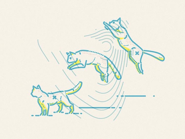 cats crawl - jamesp0p | ello