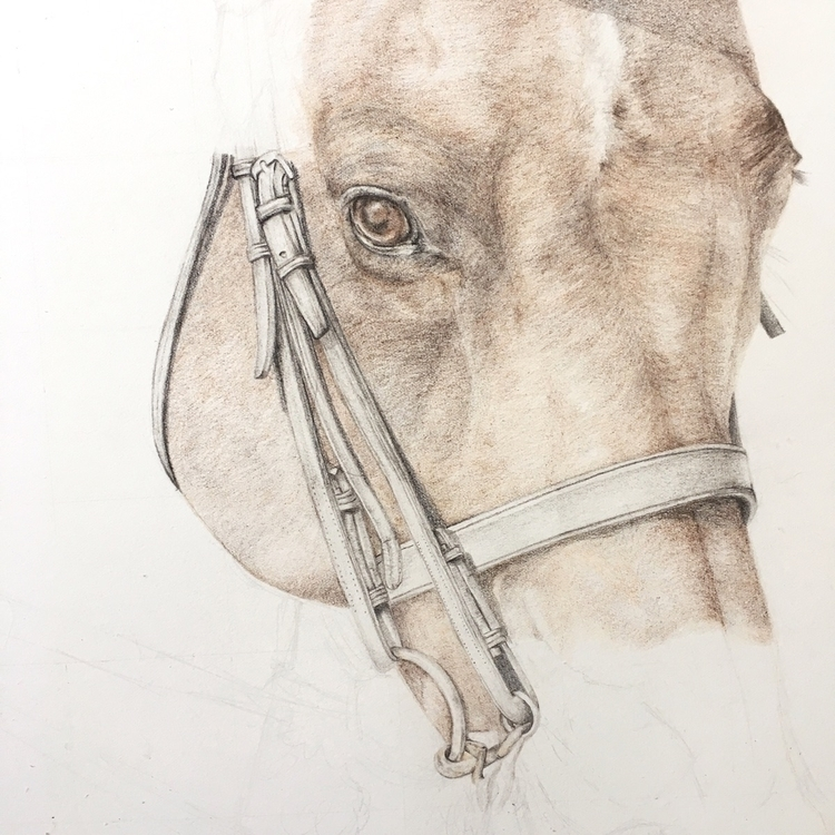 Working beauty today - horse, illustration - carmenhui | ello