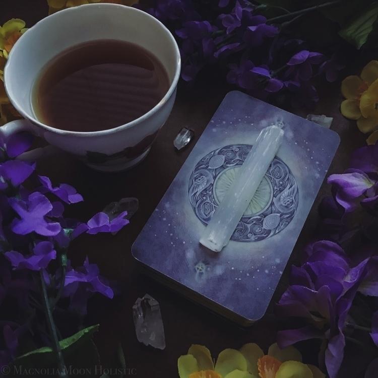 Weekend tea tarot appreciation  - magnoliamoonholistic   ello