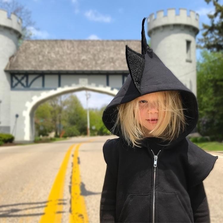 dragon guarding castle. big dea - wolfeandscamp_dinohoodies   ello