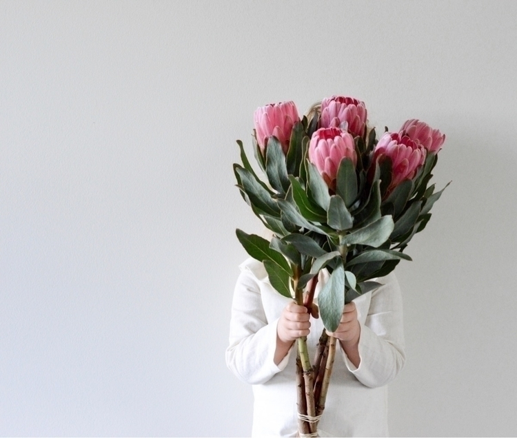 pretty blooms Sunday night - love - withmylittleloves | ello