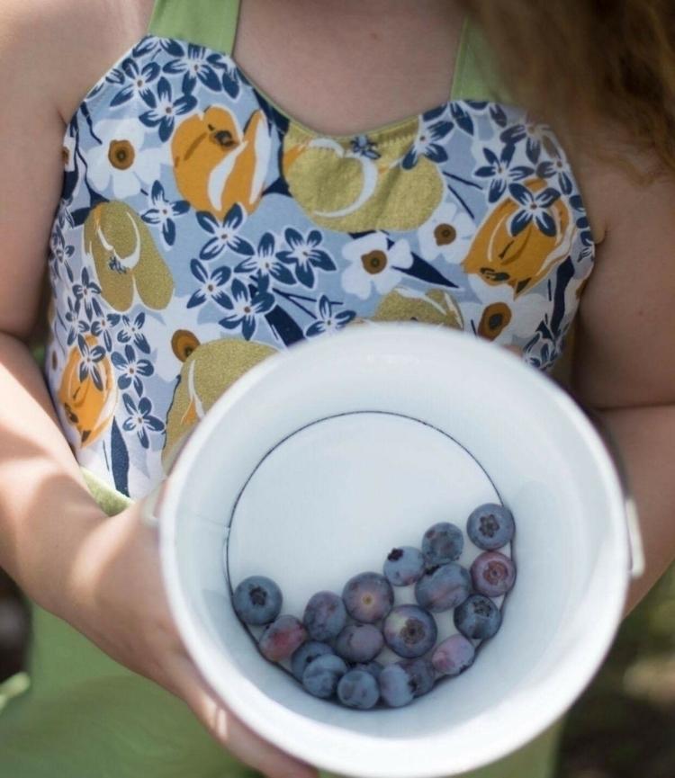 Blueberries sweet summer treat - prettylittleduck   ello