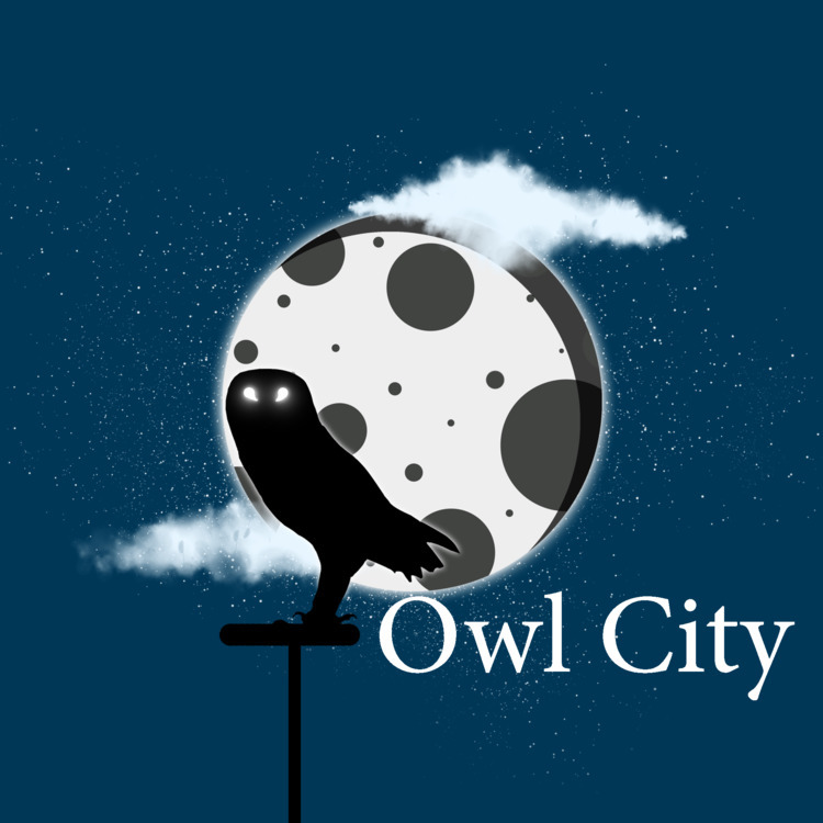 Owl City - owlcity, daily, illustration - malcolmcrowther | ello